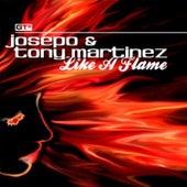 Like a Flame by Tony Martinez