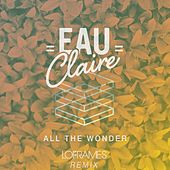 All The Wonder (Loframes Remix) by Eau Claire
