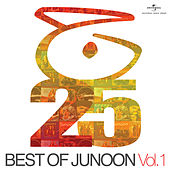 Best Of Junoon by Various Artists