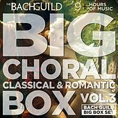 Big Choral Box Vol III, Classical and Romantic by Various Artists