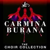 Carmina Burana - The Choir Collection by Riccardo Muti