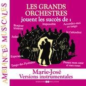Les grands orchestres jouent les succès de Marie-José (Versions instrumentales) by Various Artists