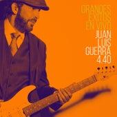 Grandes Éxitos (En Vivo) by Juan Luis Guerra