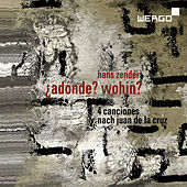 Zender: Adónde? Wohin? by Various Artists