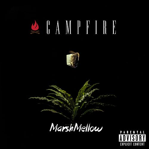 MarshMellow by Campfire