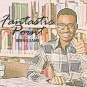 Fantastic Point by Bernie Sams