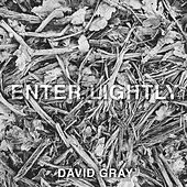 Enter Lightly by David Gray