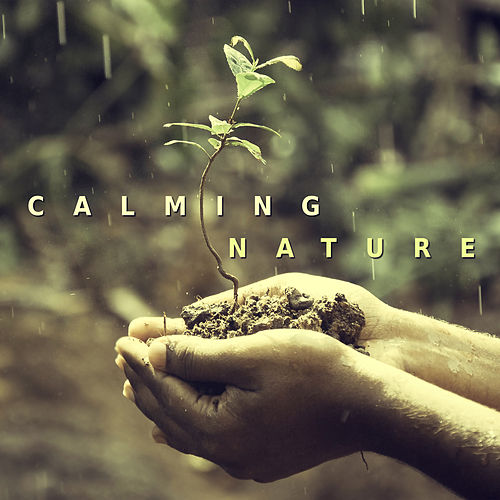 Calming Nature – Best Relaxing Music, Full of Nature Sounds, Water Sounds for Meditation, Yoga by Sounds Of Nature