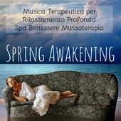 Spring Awakening - Musica Terapeutica per Rilassamento Profondo Spa Benessere Massoterapia con Suoni della Natura Strumentali New Age by Yoga Music for Kids Masters