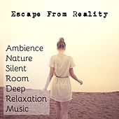 Escape From Reality - Ambience Nature Silent Room Deep Relaxation Music with Mindfulness Spa Inner Peace Sounds by Radio Meditation Music