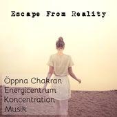 Escape From Reality - Öppna Chakran Energicentrum Koncentration Musik för Spabehandlingar Djup Avslappning by Radio Meditation Music