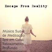 Escape From Reality - Música Suave da Natureza para Meditação de Cura Spa em Casa e Relaxamento Profundo by Radio Meditation Music