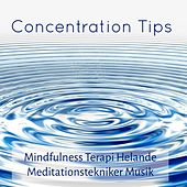 Concentration Tips - Mindfulness Terapi Helande Meditationstekniker Musik med New Age Instrumental Naturens Ljud by Concentration Music Ensemble