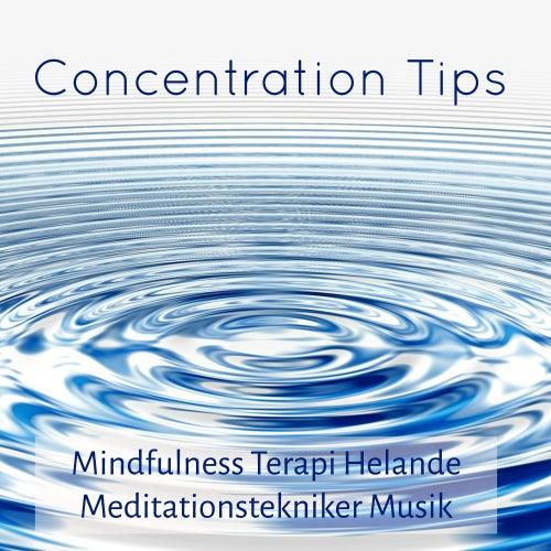Concentration Tips - Mindfulness Terapi Helande Meditationstekniker Musik med New Age Instrumental Naturens Ljud by Concentration Music Ensemble