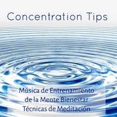 Concentration Tips - Música de Entrenamiento de la Mente Bienestar Técnicas de Meditación con Sonidos de la Naturaleza New Age Instrumentales by Concentration Music Ensemble