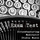 Exam Test - Stresshantering Meditativ Studie Musik för Förbättra Koncentration med Naturens Andlig Healing Instrumental Ljud by Exam Study New Age Piano Music Academy