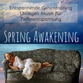 Spring Awakening - Entspannende Gehirntraining Übungen Musik für Tiefenentspannung mit Natur Instrumental New Age Geräusche by Yoga Music for Kids Masters