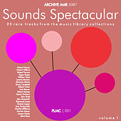 Sounds Spectacular: Plmc 25 Amazing Music Library Tracks Volume 1 by Various Artists
