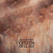 Citizen Of Glass von Agnes Obel