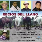 Recios del Llano by Various Artists