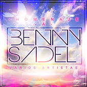 Homenaje a Benny Sadel by Various Artists