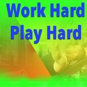 Work Hard Play Hard von Various Artists