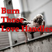 Burn Those Love Handles von Various Artists