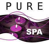 Pure Spa –  Spa Lounge Music, Massage Treatments, Wellness, Calming Sounds of Nature, Pure Massage, Deep Relax by Echoes of Nature