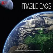 Fragile Oasis by Various Artists