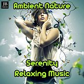 Ambient nature by Fly Project