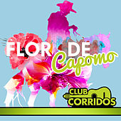 Club Corridos Presenta: Flor de Capomo by Various Artists