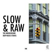 Slow & Raw, Vol. 1 by Various Artists