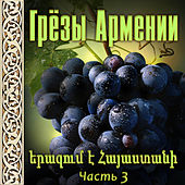 Грёзы Армении 3 by Various Artists