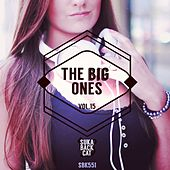 The Big Ones, Vol. 15 by Various Artists