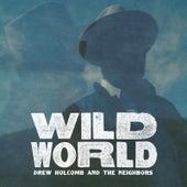 Wild World by Drew Holcomb