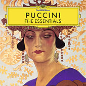 Puccini: The Essentials by Various Artists