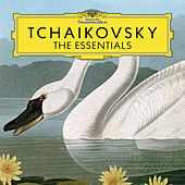 Tchaikovsky: The Essentials by Various Artists