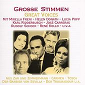 Grosse Stimmen by Various Artists