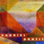 Gabriel Brnčić by Various Artists