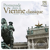 A Trip to Vienna: Haydn, Mozart, Beethoven by Various Artists