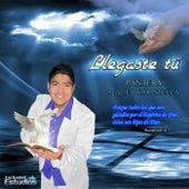 Llegaste Tu by Pantera Del Norte
