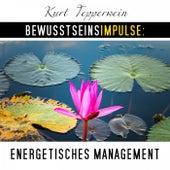 Bewusstseinsimpulse: Energetisches Management by Kurt Tepperwein