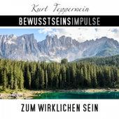 Bewusstseinsimpulse zum wirklichen Sein by Kurt Tepperwein