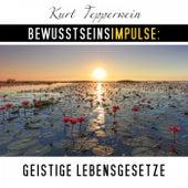 Bewusstseinsimpulse: Geistige Lebensgesetze by Kurt Tepperwein