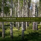Telemann: Music for Flute by Ensemble Fratres