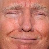 Dear Trumpy (Love Letter to Donald Trump) by Dan Bull