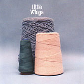 The Wonder City by Little Wings