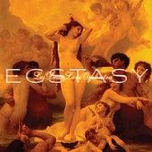 Ecstasy by Les Deux Love Orchestra