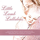 Little Lamb Lullabies by Little Lamb Music