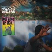 Nothing Is Real von Crystal Antlers